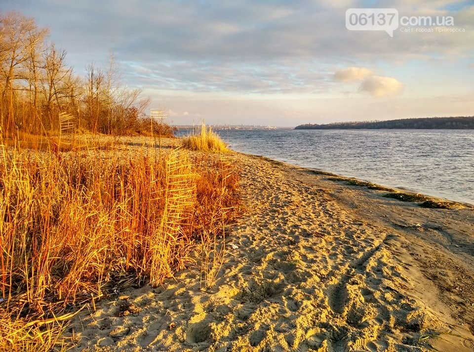 Иней, лед и солнце: живописные выходные в Запорожье. Фото , фото-14