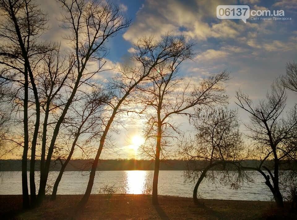 Иней, лед и солнце: живописные выходные в Запорожье. Фото , фото-15