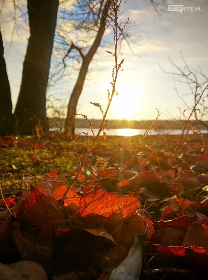 Иней, лед и солнце: живописные выходные в Запорожье. Фото , фото-16