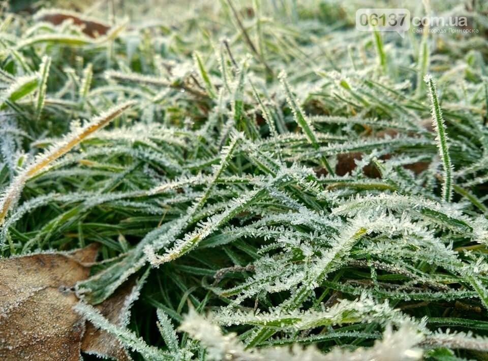 Иней, лед и солнце: живописные выходные в Запорожье. Фото , фото-17