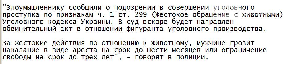 Житель Запорожской области расправился с собакой соседа, напав на нее с топором. Фото    , фото-1