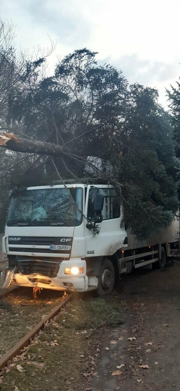В Запорожье фура протаранила дерево и вылетела на трамвайные пути. Фото, фото-2