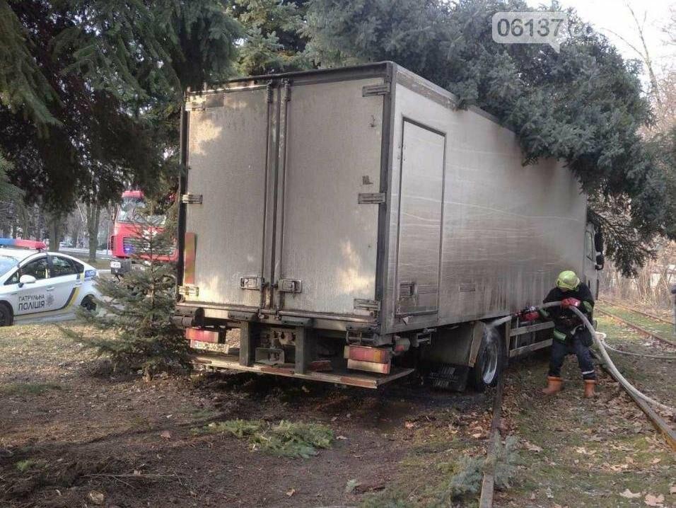 В Запорожье фура протаранила дерево и вылетела на трамвайные пути. Фото, фото-3