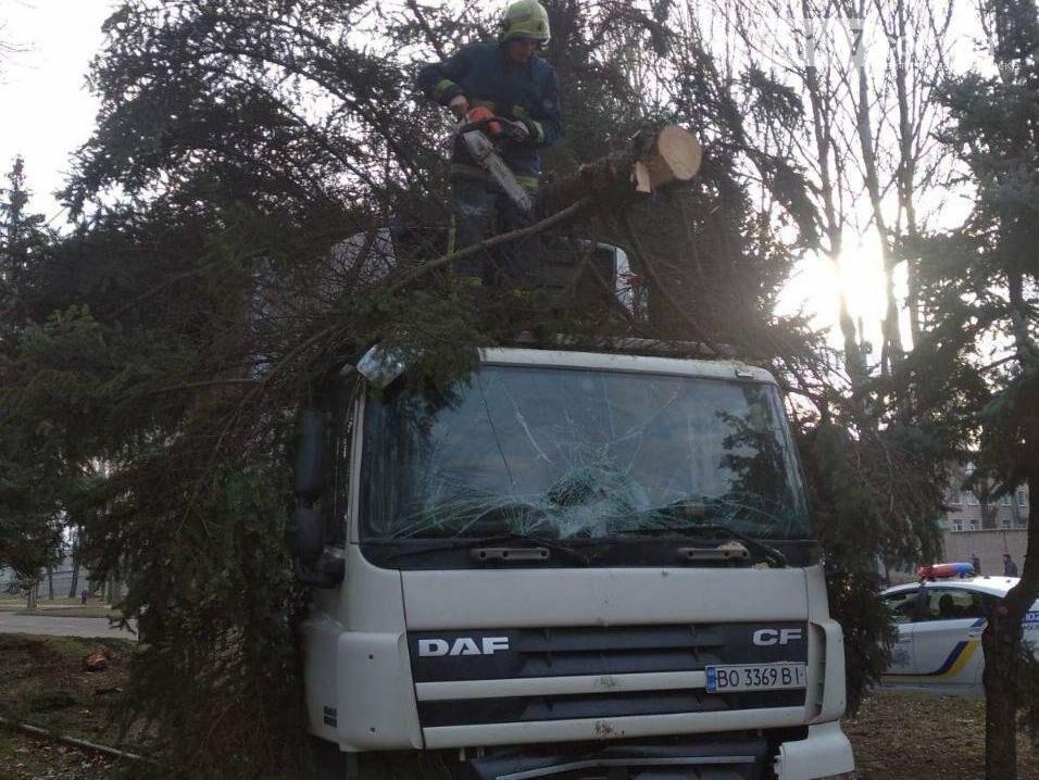 В Запорожье фура протаранила дерево и вылетела на трамвайные пути. Фото, фото-4