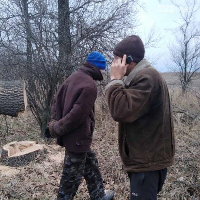 В Запорожской области черный лесоруб бросался на людей с бензопилой. Фото, фото-3