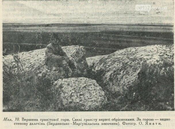 На территорії Приморська  збереглися рідкісні рослини минулого сторіччя, фото-3