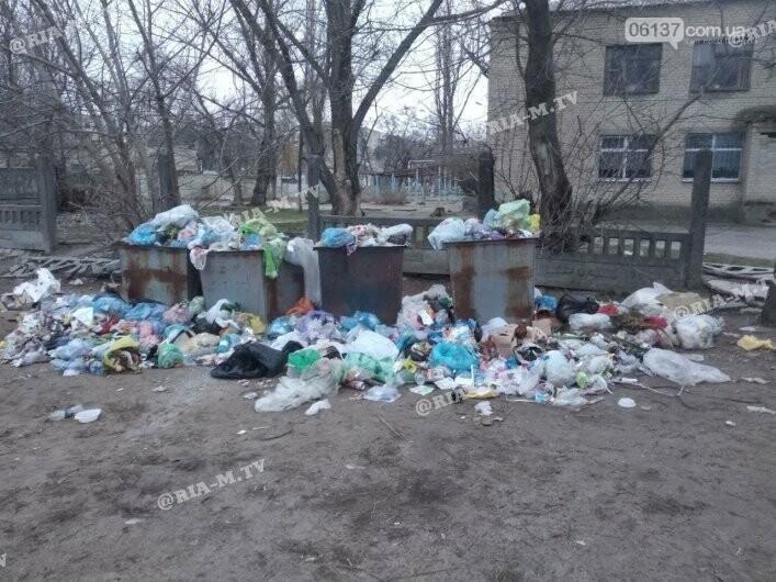 """Экологическое безобразие: в Запорожской области """"туристический"""" поселок утонул в мусоре. Фото, фото-2"""