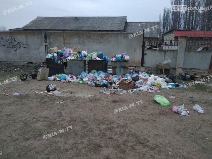 """Экологическое безобразие: в Запорожской области """"туристический"""" поселок утонул в мусоре. Фото, фото-3"""
