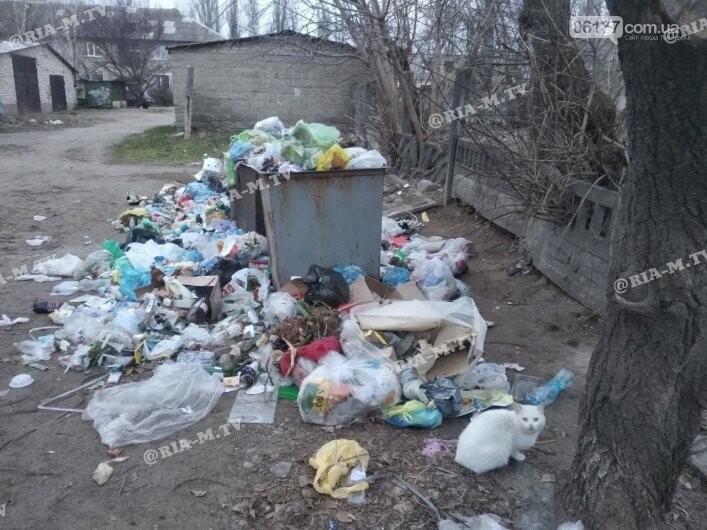 """Экологическое безобразие: в Запорожской области """"туристический"""" поселок утонул в мусоре. Фото, фото-4"""