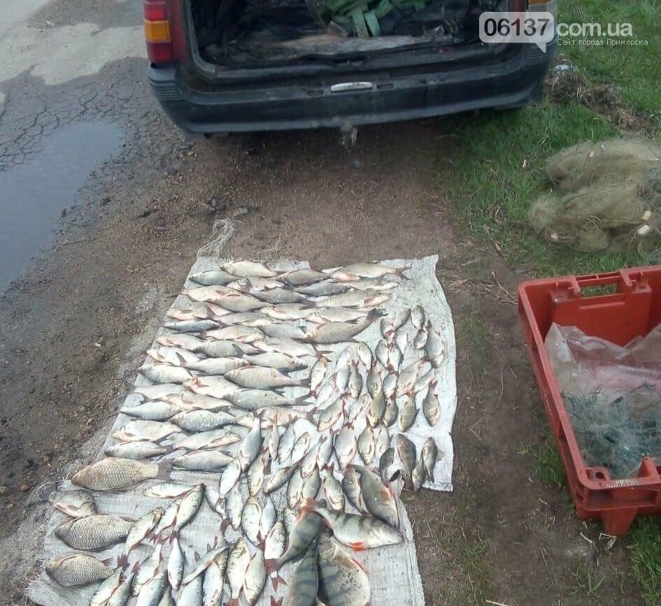 В Бердянському районі правоохоронці затримали автомобіль з рибою та браконьєрськими сітками, фото-1