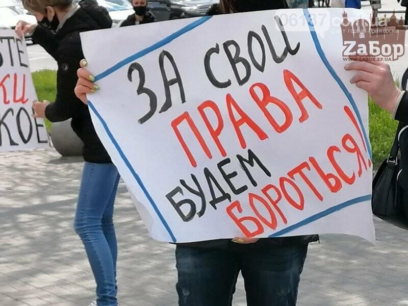 Предприниматели протестовали против назначения директора КП «Запорожрынок». Фото. Видео, фото-2